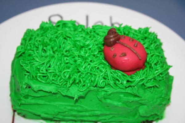 Ladybug Smash Cake