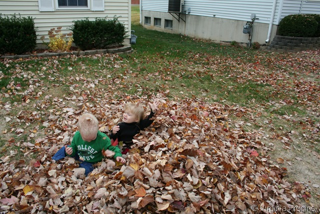kids fall photography