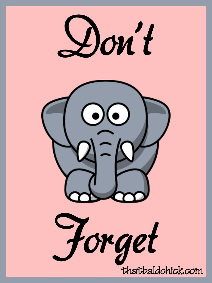 elephant clipart don't forget