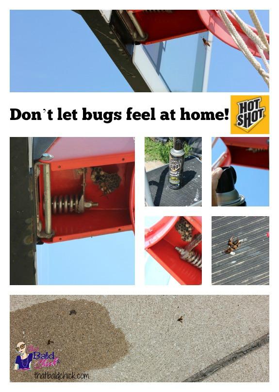 Hot Shot Wasp and Hornet Killer