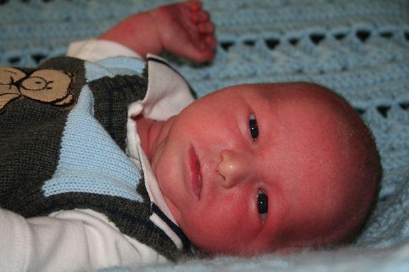 Mister 16 days old