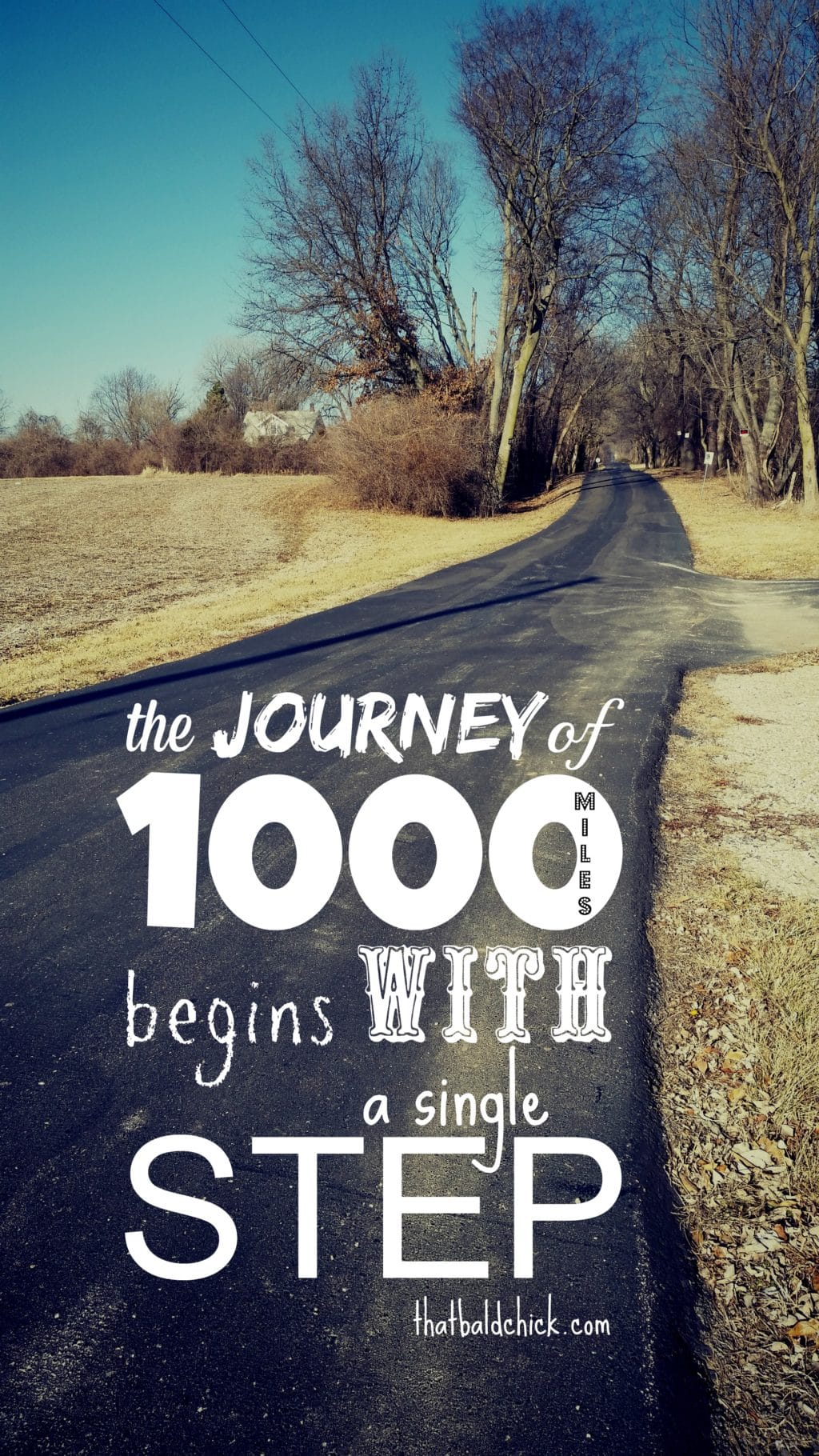 the journey of 1000 miles begins with a single step @thatbaldchick