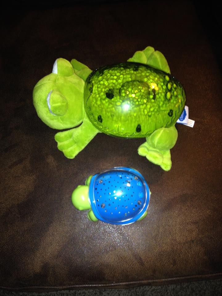 Tranquil Frog and Super Max the Turtle from Cloud B