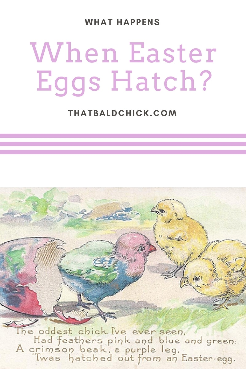What Happens When Easter Eggs Hatch at thatbaldchick.com