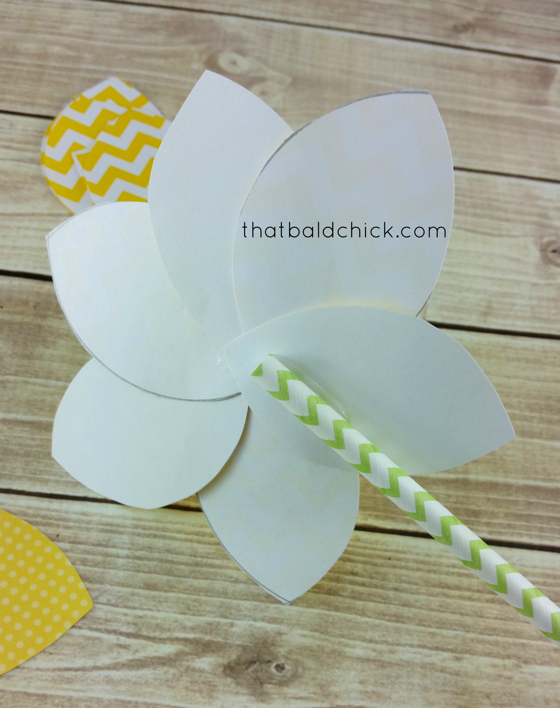 affix straw to back of petals
