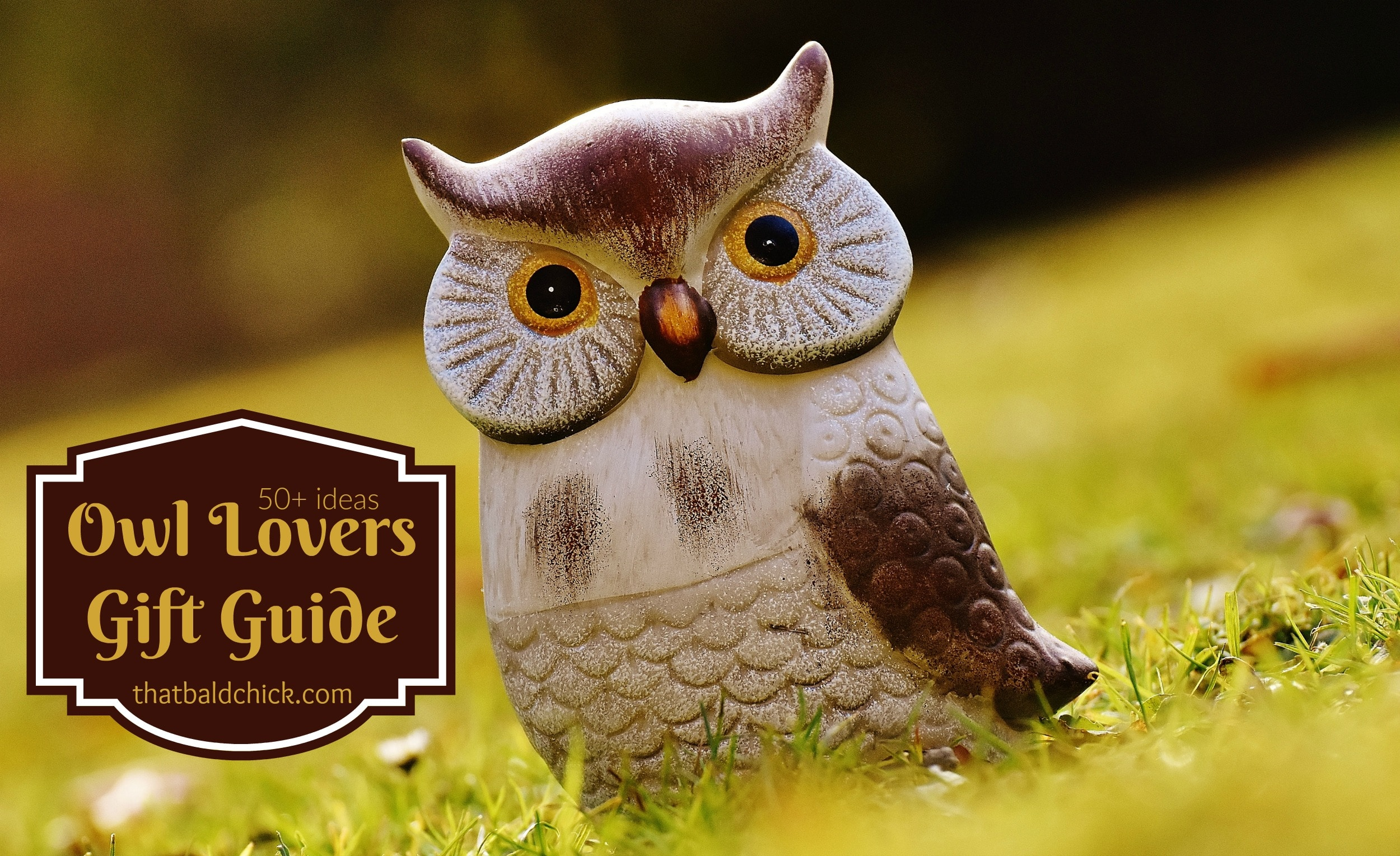 Gift Guide for Owl Lovers - over 50 ideas to show them you give a hoot!