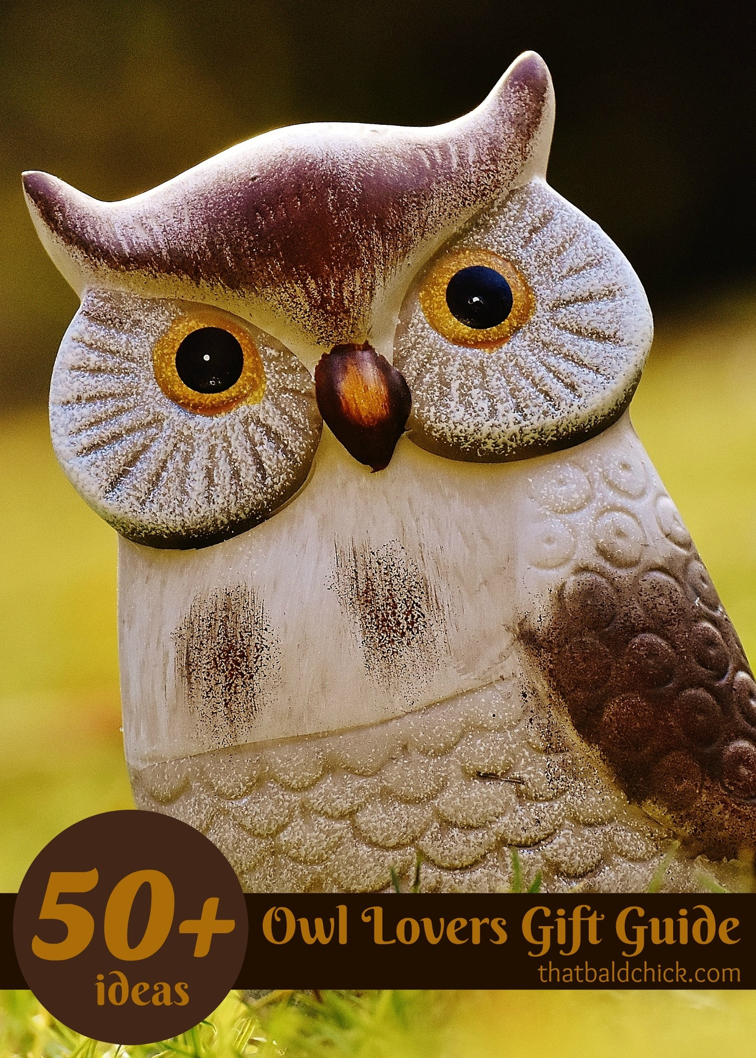 Owl lovers gift guide with over 50 gift ideas at thatbaldchick.com