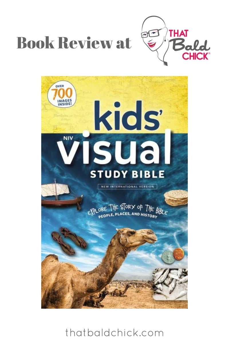 The NIV Kids Visual Study Bible is a great option for children with reading difficulty.