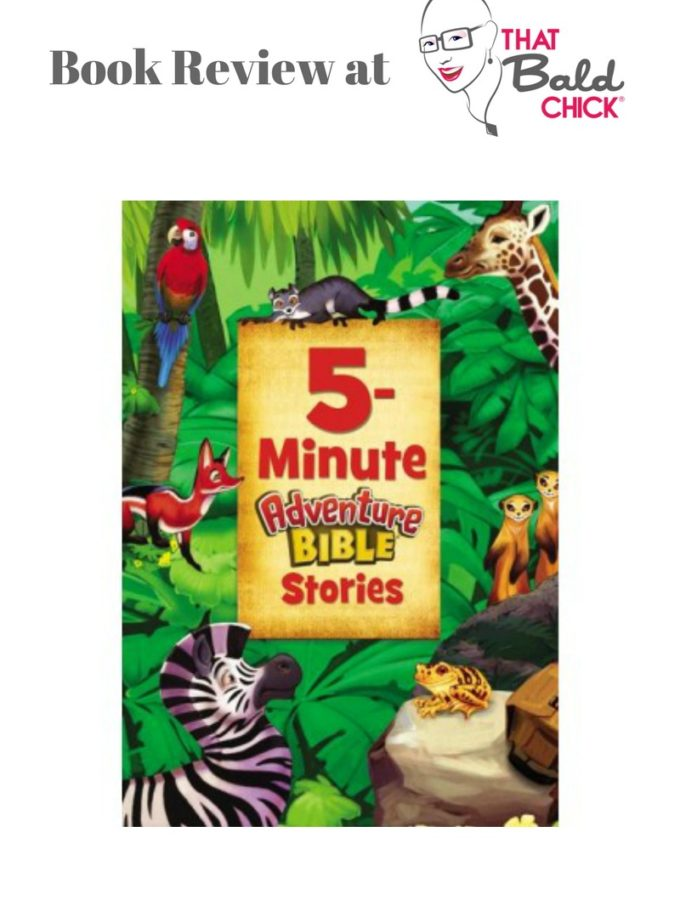 5 Minute Adventure Bible Stories at thatbaldchick.com