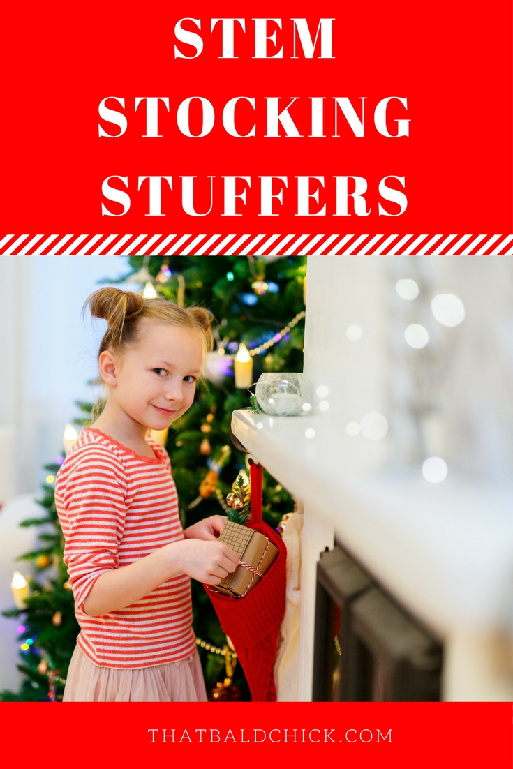 20+ STEM Stocking Stuffers to delight your kids at thatbaldchick.com