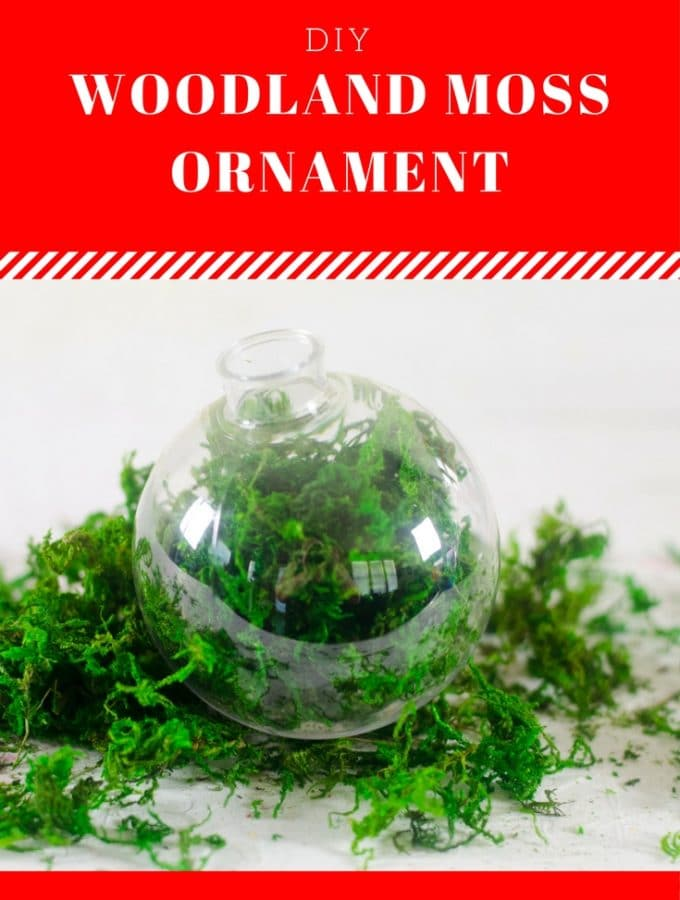 This homemade Woodland Moss Ornament is simple and elegant! #diy #Christmas #ornament