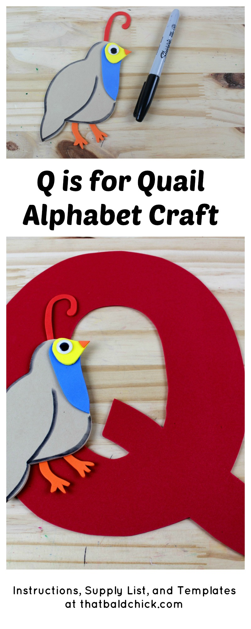 Q is for Quail Alphabet Craft - supply list, instructions, and templates at thatbaldchick.com