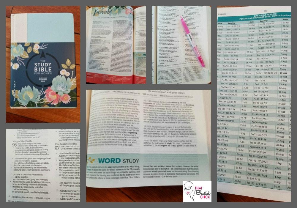 CSB Study Bible for Women