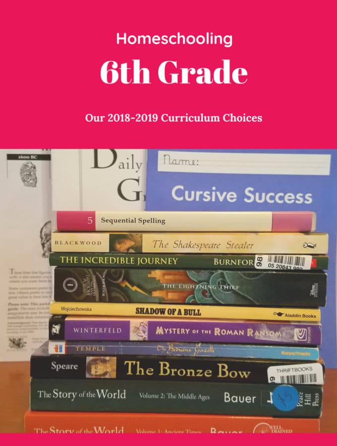 Come check out our 2018-2019 curriculum choices for Homeschooling 6th Grade!