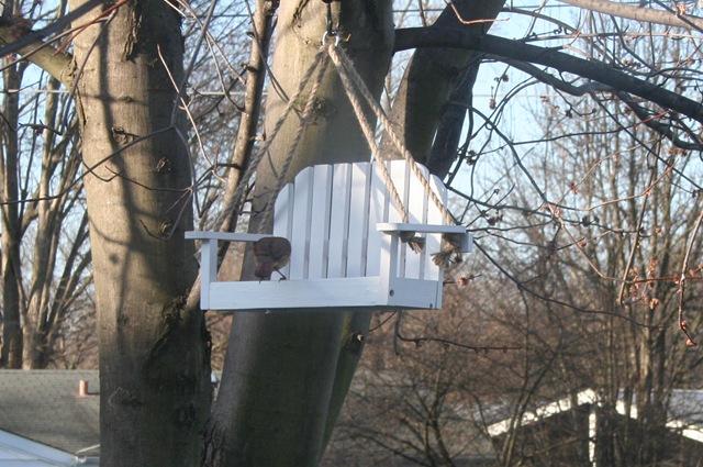 bird feeder bench