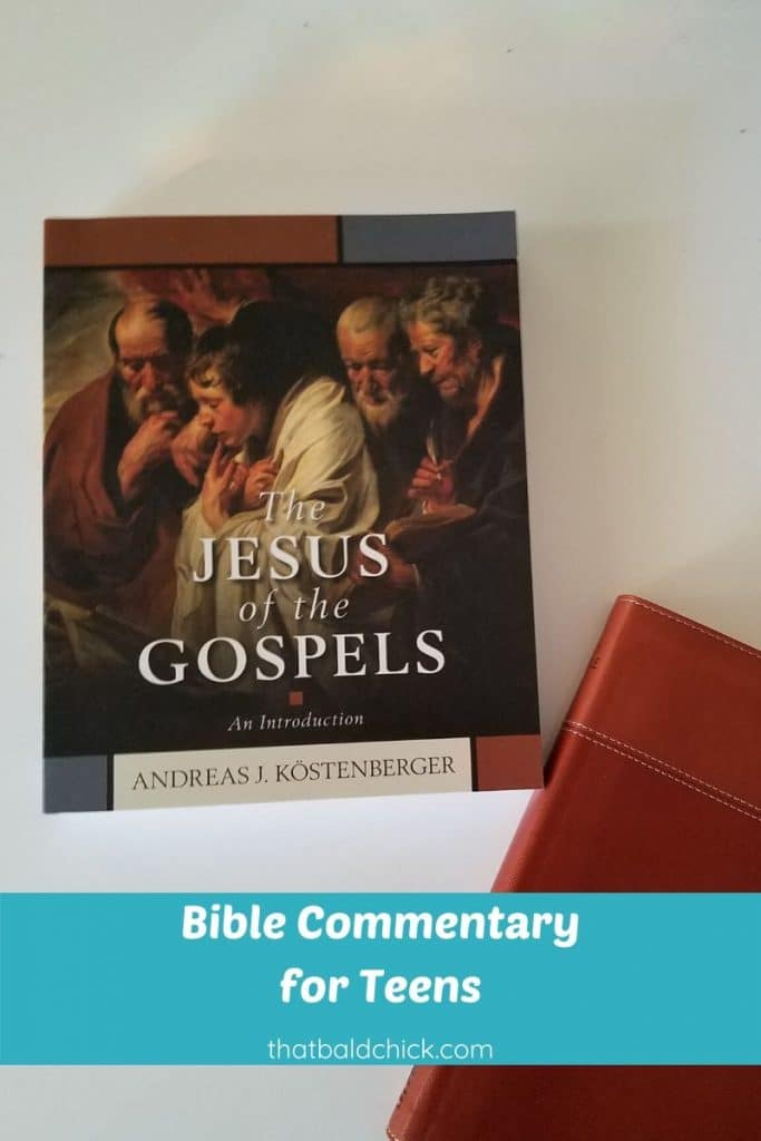 Bible Commentary for Teens