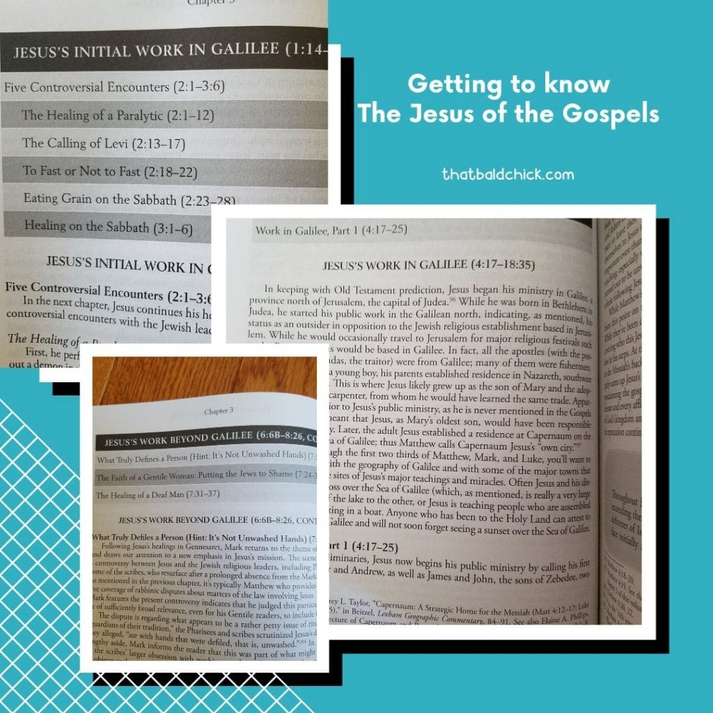 Getting to Know the Jesus of the Gospels