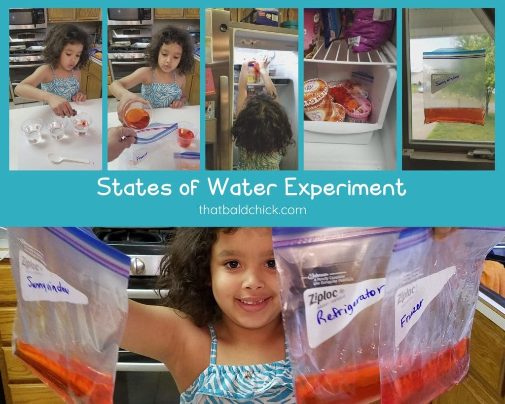 States of Water Experiment