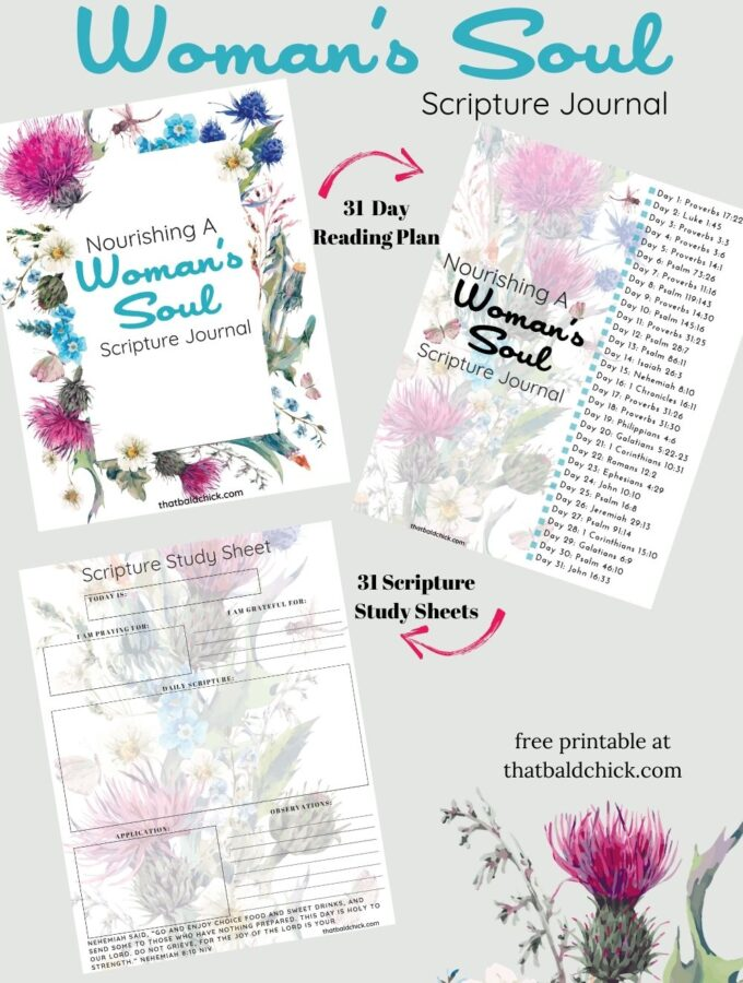 Nourishing A Woman's Soul Journal with Scripture Study Sheets