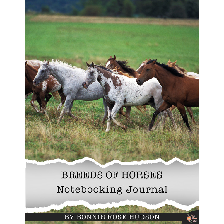 Breeds of Horses Notebooking Journal from Write Bonnie Rose