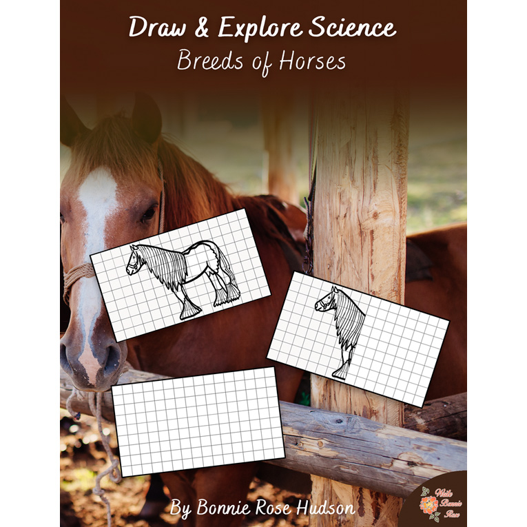 Draw and Explore Horse Breeds from Write Bonnie Rose